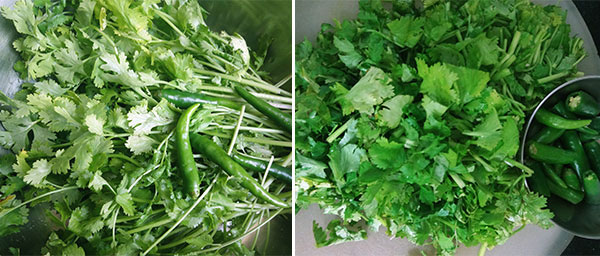 wash and chop coriander leaves for coriander leaves chutney