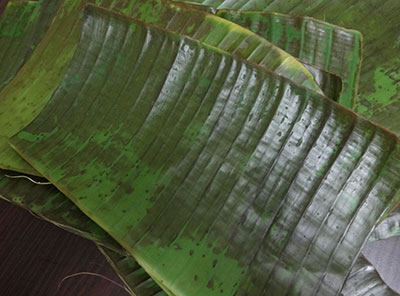 banana leaves for halasina hannina gatti or jackfruit kadubu