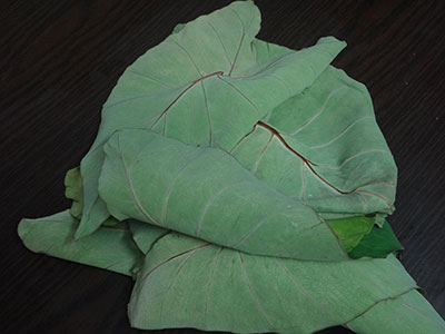 taro leaves for kesuvina ele chutney or taro leaves chutney