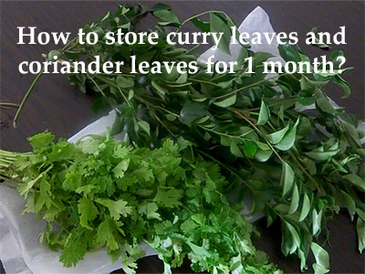tips to store leaves