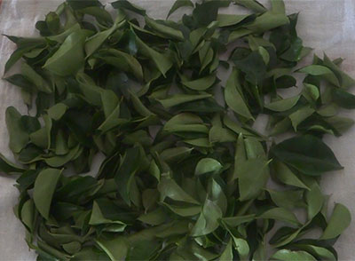 rinsed curry leaves to store it for long time