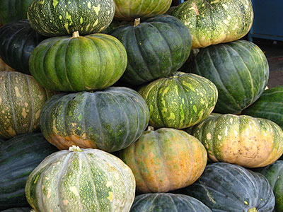 pumpkin names and recipes